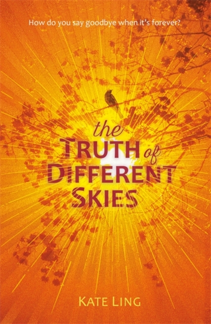 Ventura Saga: The Truth of Different Skies