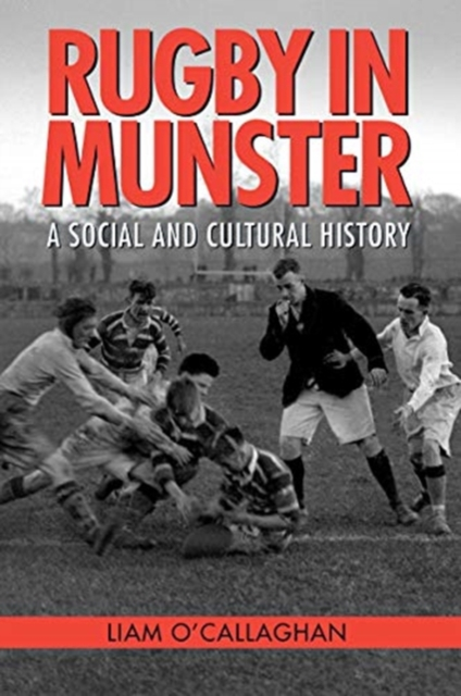 Rugby in Munster : A Social and Cultural History