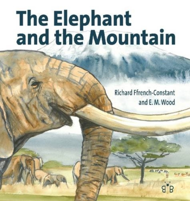 Elephant and the Mountain