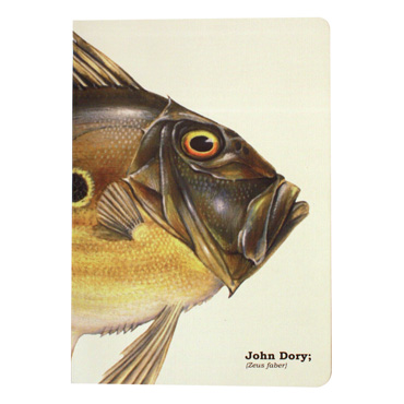 A5 Notebook - John Dory Fish