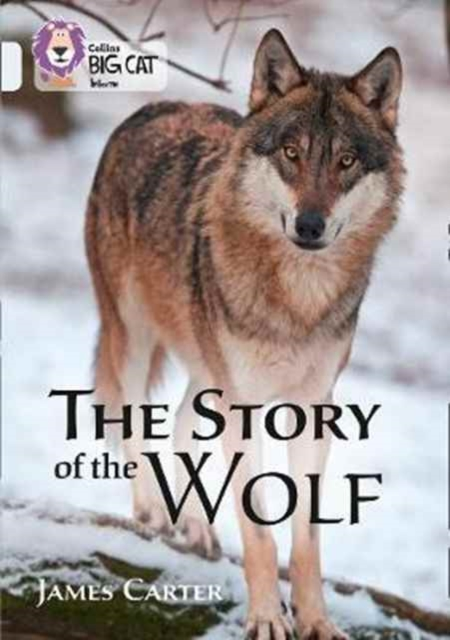 Story of the Wolf