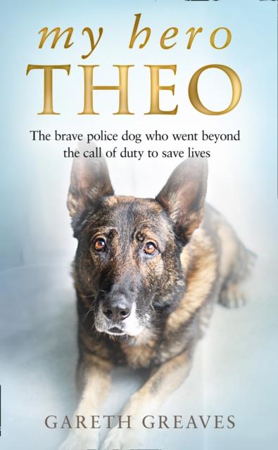 My Hero Theo