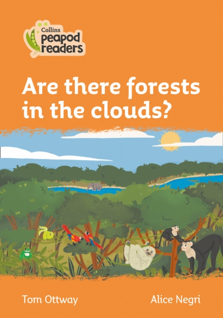 Level 4 - Are there forests in the clouds?