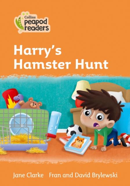 Level 4 - Harry's Hamster Hunt