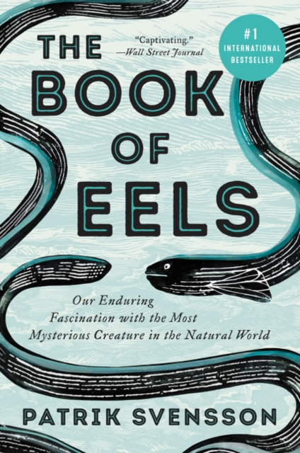 Book of Eels