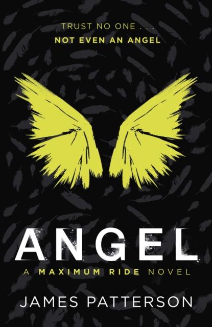 Angel: A Maximum Ride Novel