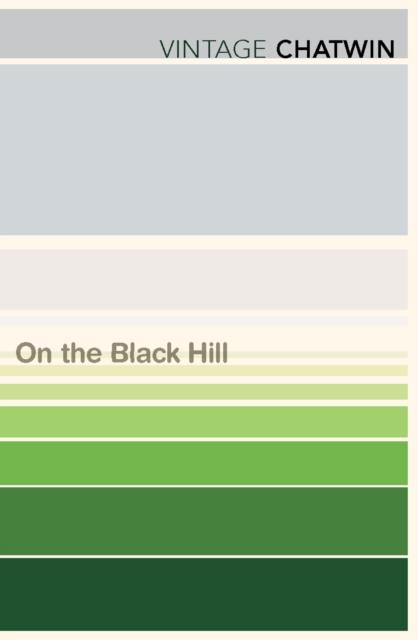 On The Black Hill (Vintage Classics)