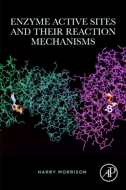 Enzyme Active Sites and their Reaction Mechanisms