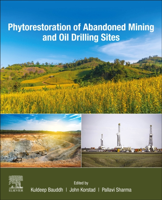 Phytorestoration of Abandoned Mining and Oil Drilling Sites