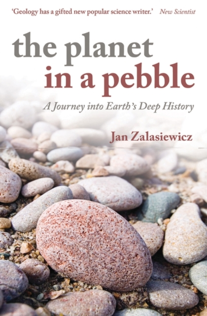 Planet in a Pebble