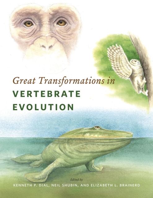 Great Transformations in Vertebrate Evolution