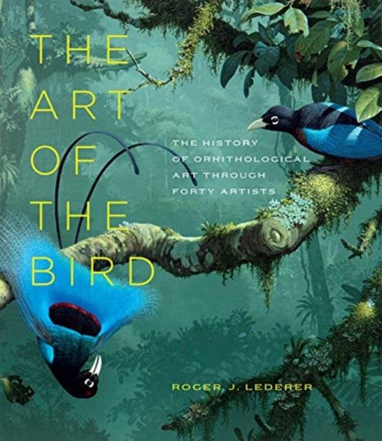 Art of the Bird