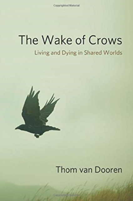 Wake of Crows