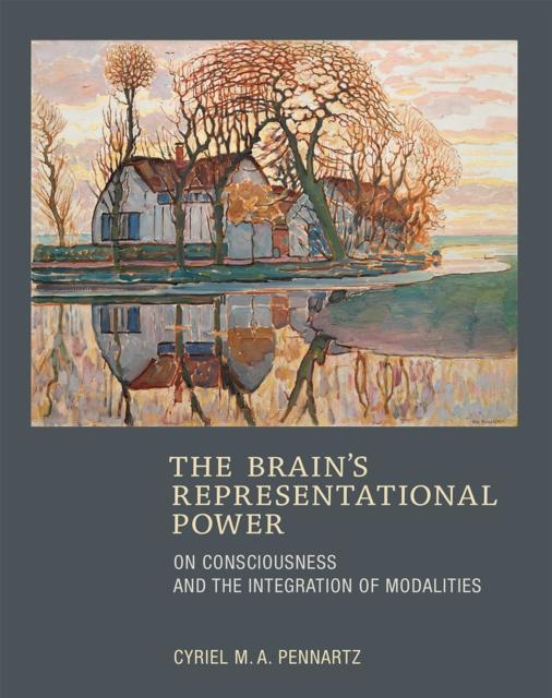 Brain's Representational Power