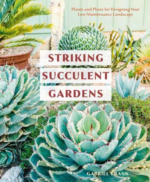 Striking Succulent Gardens