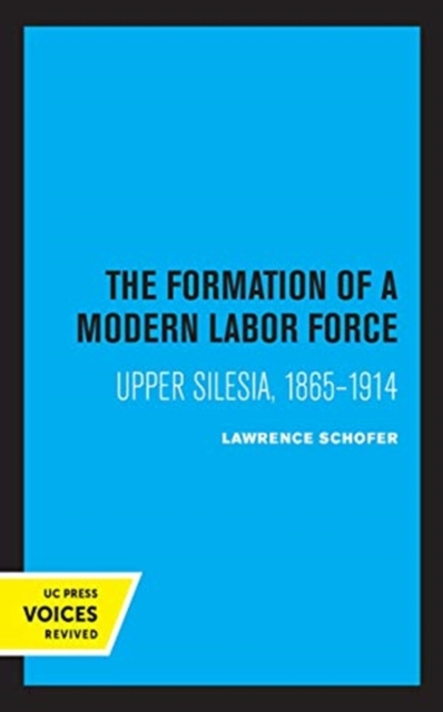 Formation of a Modern Labor Force