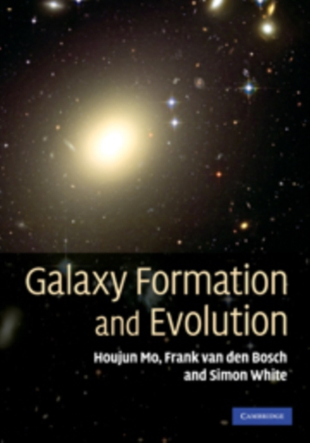 Galaxy Formation and Evolution