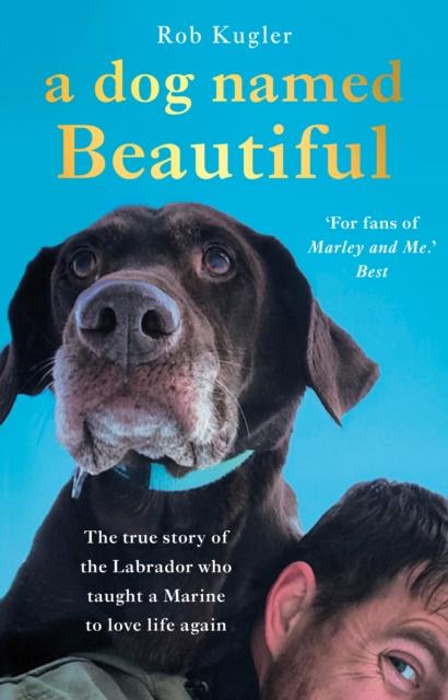 Dog Named Beautiful