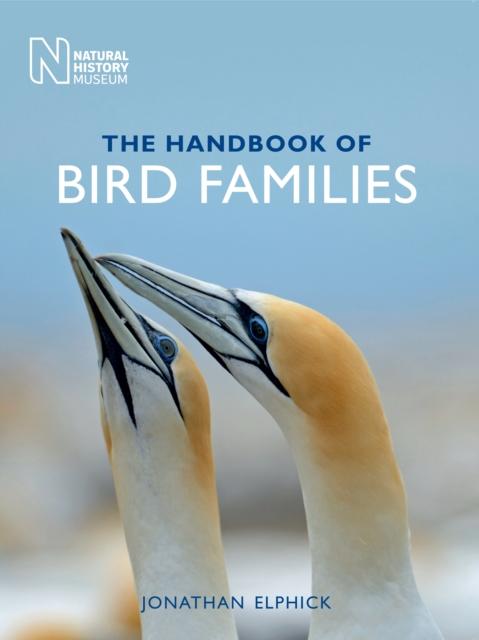 Handbook of Bird Families