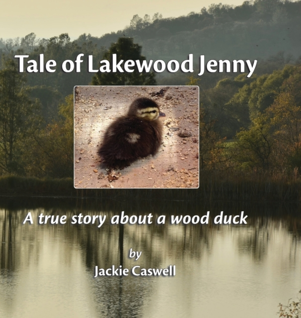 Tale of Lakewood Jenny