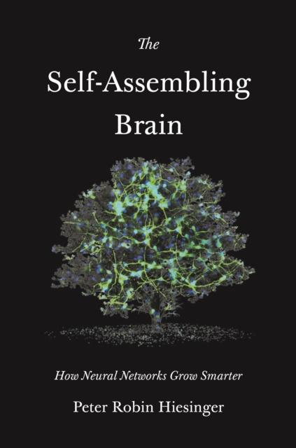 Self-Assembling Brain