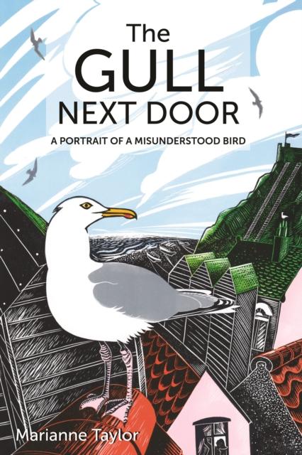 Gull Next Door