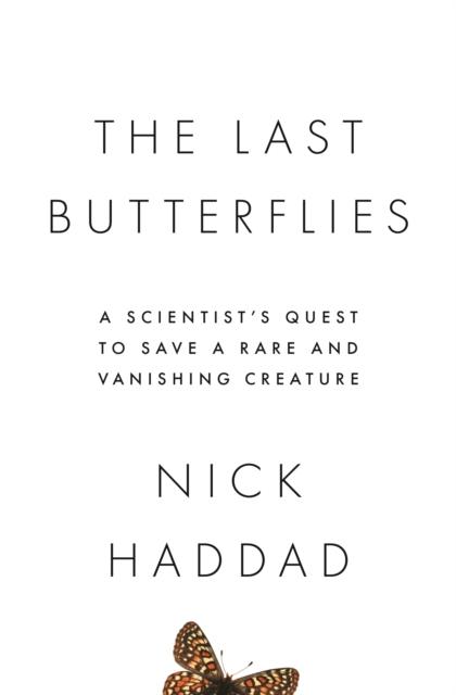 Last Butterflies