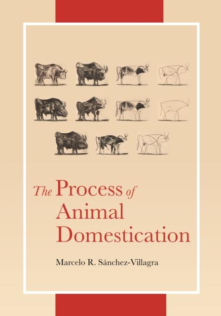 Process of Animal Domestication