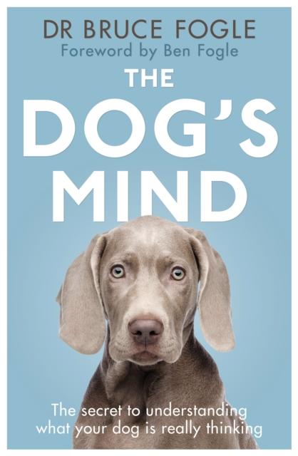 Dog's Mind