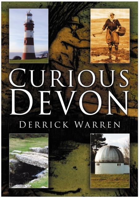 Curious Devon