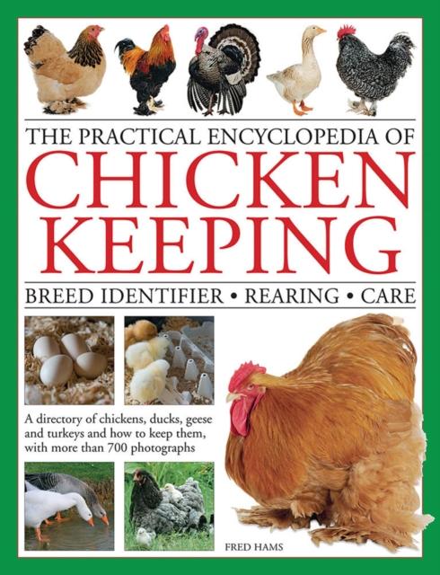 Practical Encyclopedia of Chicken Keeping