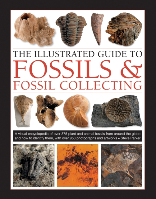Fossils & Fossil Collecting, The Illustrated Guide to