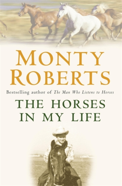 Horses in My Life