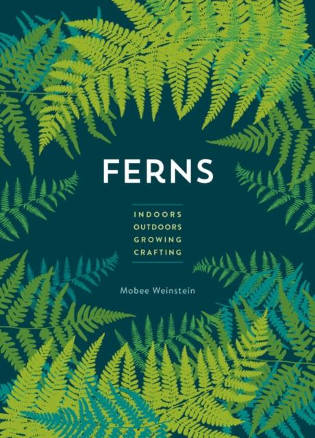 Ferns mini