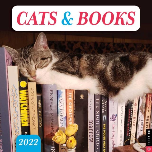 Cats & Books 2022 Wall Calendar