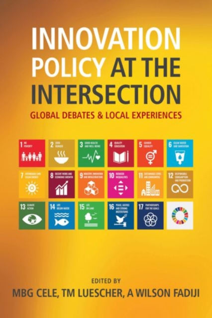 Innovation Policy at the Intersection