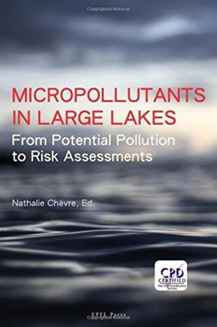 Micropollutants in Large Lakes