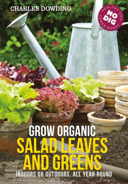 Grow Organic Salad Leaves and Greens