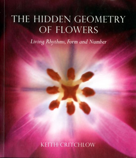 Hidden Geometry of Flowers