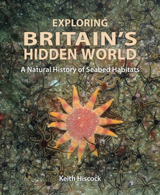 Exploring Britain`s Hidden World - A Natural History of Seabed Habits