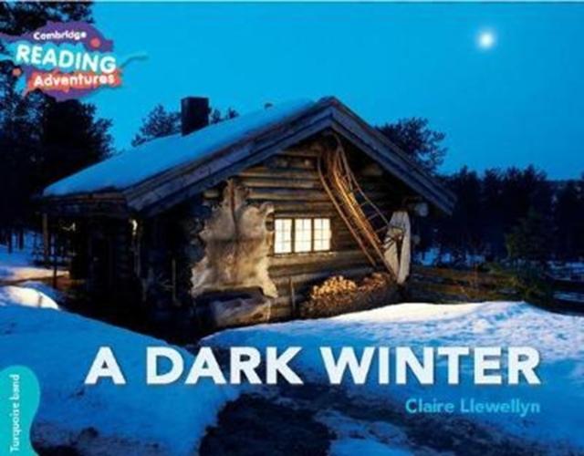 Dark Winter Turquoise Band