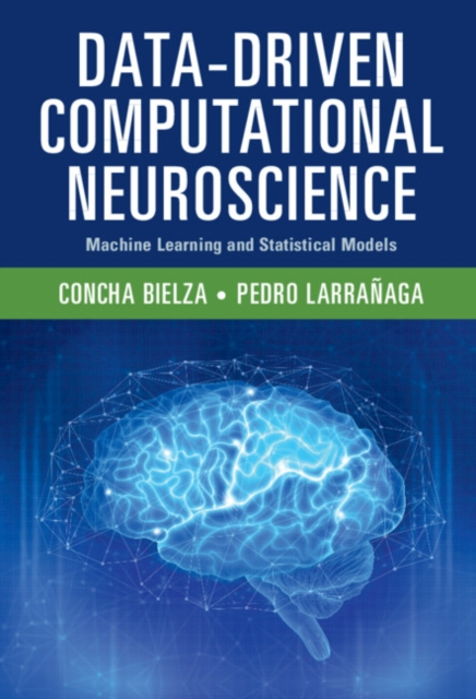 Data-Driven Computational Neuroscience