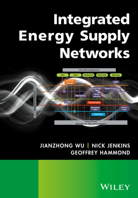 Integrated Energy Supply Networks