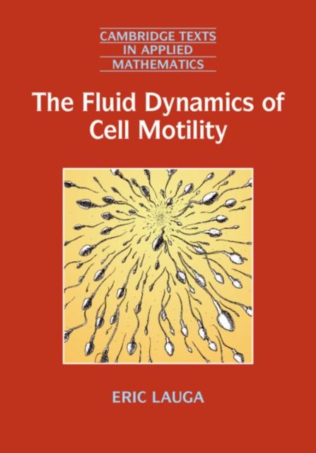 Fluid Dynamics of Cell Motility