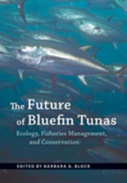 Future of Bluefin Tunas