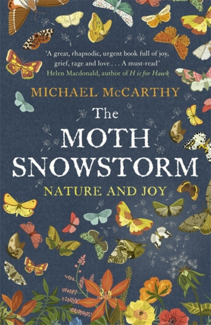 Moth Snowstorm