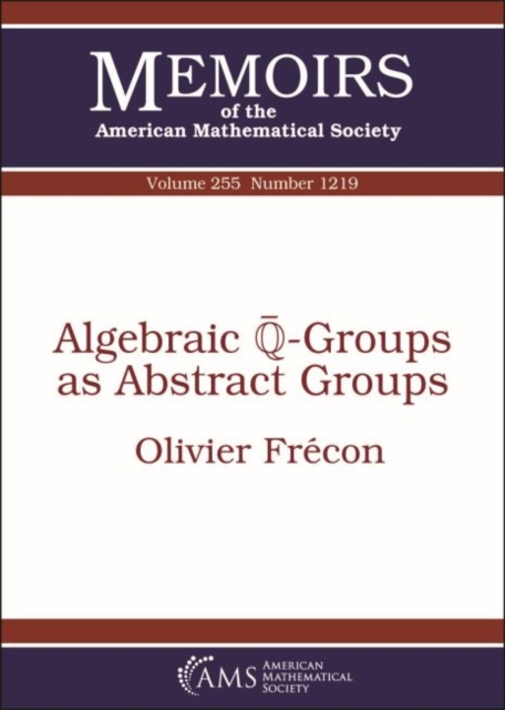 Algebraic $overline {mathbb {Q}}$-Groups as Abstract Groups