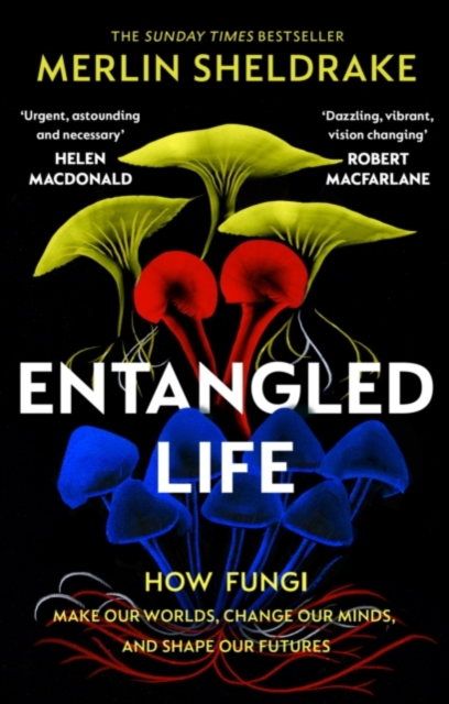 Entangled Life - Independent Exclusive Edition