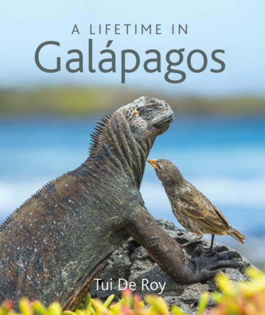Lifetime in Galapagos