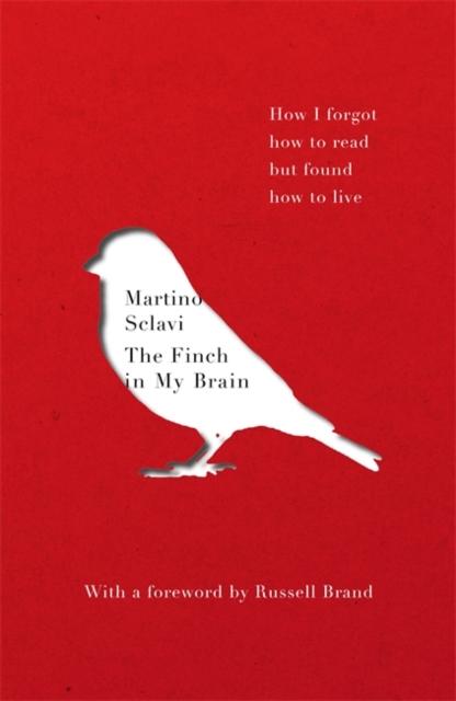 Finch in My Brain
